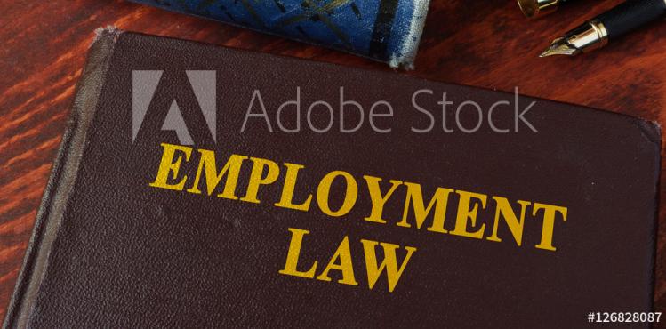 employmentLaw1-hbg