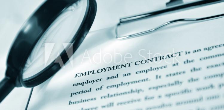 employmentLaw3-hbg